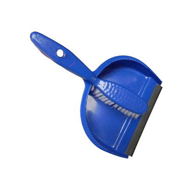 Plastic Dust Pan and Brush